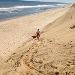 The paths down to the winter beach can steep.