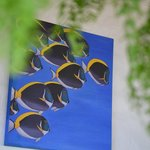 Bright, colorful paintings throughout common areas