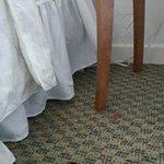Las habitaciones dejan mucho que desear, mobiliario en mal estado, sin secador de pelo, sin frig