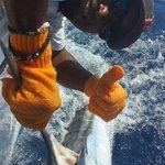White Marlin 4/2014 mikes marina