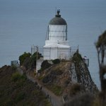 Nugget Point 1