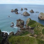 Nugget Point 2
