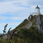 Nugget Point 3