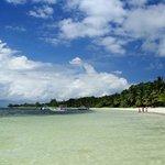the beach that runs along the hotel