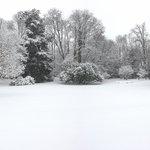 Suggestioni invernali.