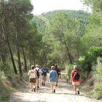 Setting off on a Hotel Mariposa walk