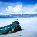 Kintyre shore