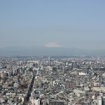 View of the city and Mount Fuji from 41st floor
