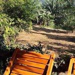 Tree Hut - Terasse mit Blick in den Dschungel