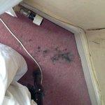 Dirt/mould on carpet by headboard