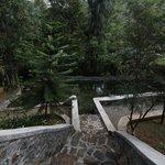 natural water pool