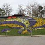 Цветочные часы, Женева