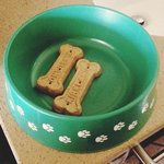 Free dog water bowl with treats upon request