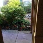 Step into the garden..