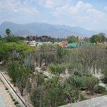 Botanic Gardens Oaxaca