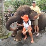 Elephant Feeding & Hugs