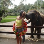 Elephant Kisses are Special
