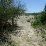Trail to Rio Grande river crossing at Boquillas (legal)