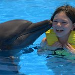 Great Dolphin Experience for all ages (even parents)