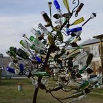 Bottle tree on grounds