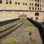 The Railways of the High Line