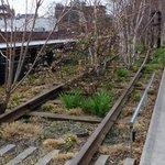 Garden vs Railway