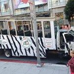 All aboard the safari bus!