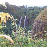 Opaekaa Falls - Natural Beauty