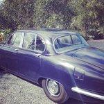 George, the vintage Jaguar