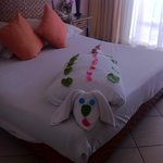 Incredible towel art