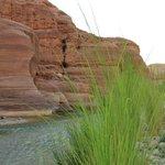 Wadi Al Hasa-Mujib
