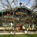 Osterbaum im Rehkitz