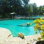 Pool in tropischer Umgebung