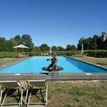 La piscine au milieu des Vignes