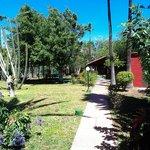 Gartenanlage-Poolbereich