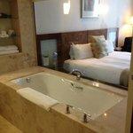 Glass wall dividing bath & bedroom
