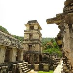 wonderful palenque