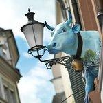 Unsere Kuh - Heidi, das meist fotografierte Sujet der Altstadt