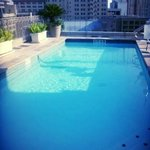 Roof Top Pool!