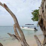 Mar y Sol - our boat