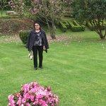 despues de un buen chuleton visita por el jardin