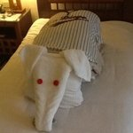 our final towel art by samy