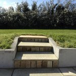 Steps up to the lawn
