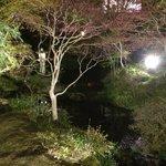 夜の中庭も風情があり