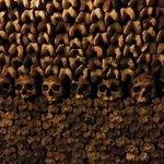 Bones.. n skulls.