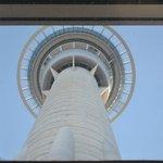 The skycity tower