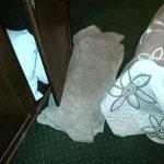 Toallas usadas para secar el piso