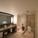 Large shower enclosure and TV built into mirror