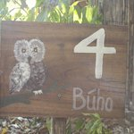Owl house...
