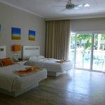 Gardenview room 40202